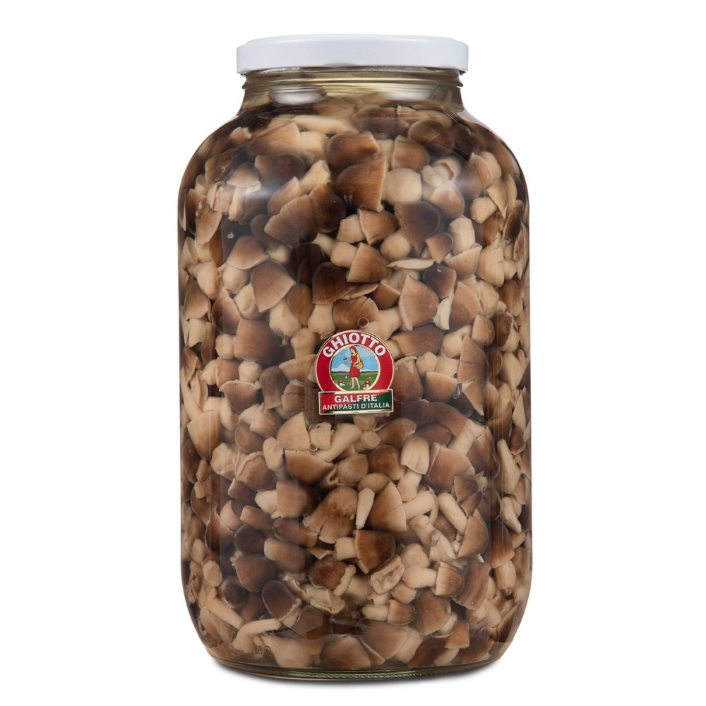 Moss mushrooms kg. 4,1 jar