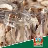 Come utilizzare i funghi secchi in cucina
